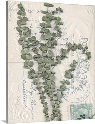 Postcard Wildflowers IV