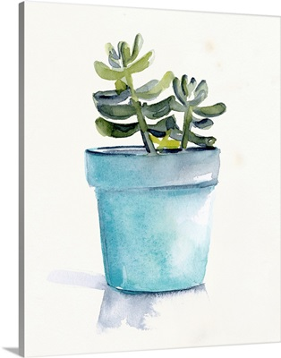 Potted Succulent II