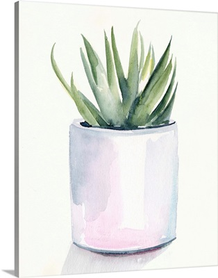 Potted Succulent III
