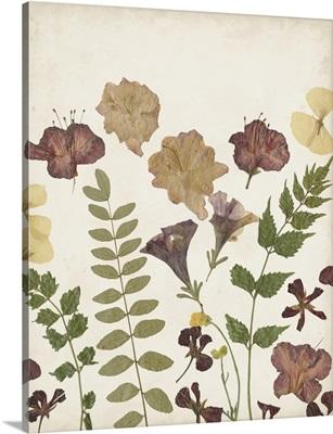 Pressed Flower Arrangement II