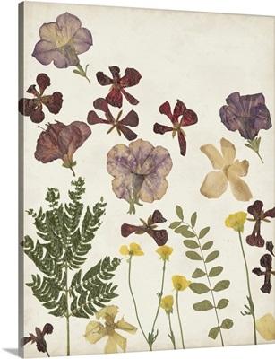 Pressed Flower Arrangement IV