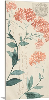 Pressed Flowers Collection B
