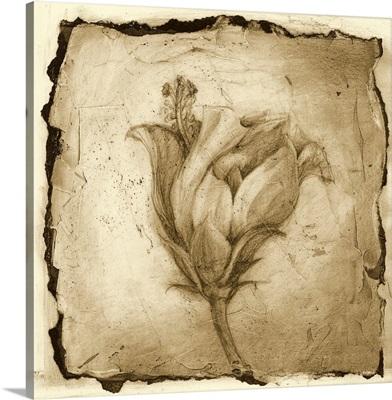 Printed Floral Impression VIII