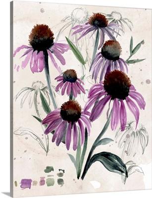Purple Wildflowers II