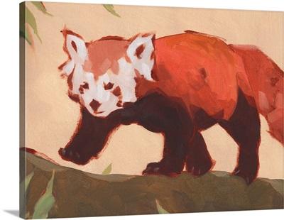 Red Panda II