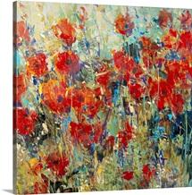 Red Poppy Field II