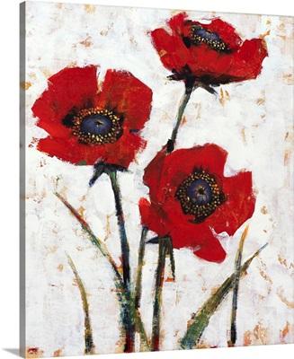 Red Poppy Fresco II