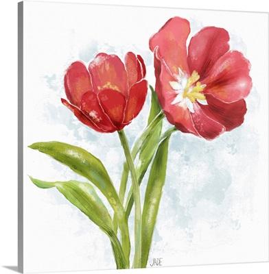 Red Tulip Splash I