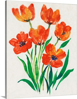 Red Tulips in Bloom II