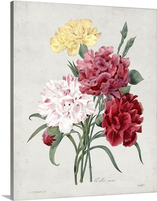 Redoute Bouquet I