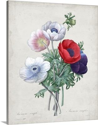 Redoute Bouquet II