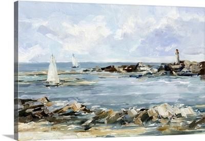 Rocky Shore Coastline II