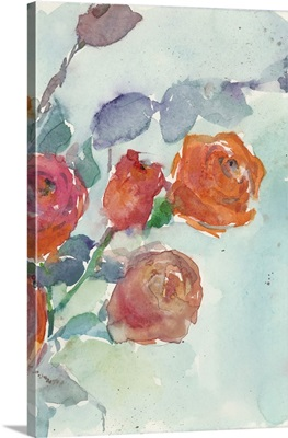 Rose Appeal II