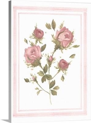 Rose Pattern II