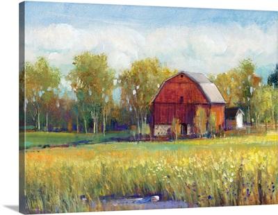 Rural America I