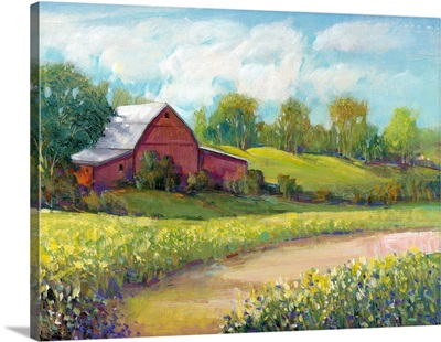 Rural America II