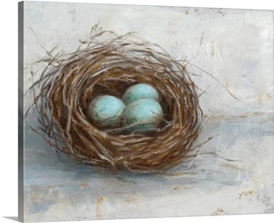 Rustic Bird Nest I