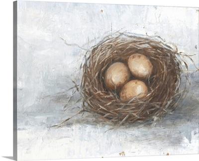 Rustic Bird Nest II