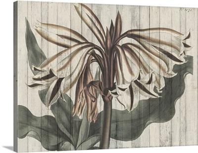 Rustic Floral III