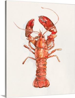 Salty Lobster II