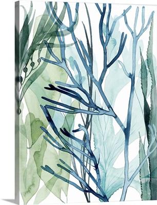 Sea Leaves II