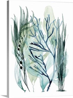 Sea Leaves III