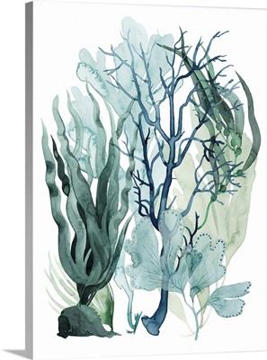 Sea Leaves IV