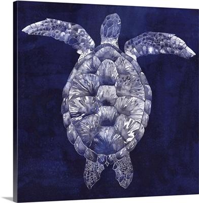 Sea Turtle Shadow I