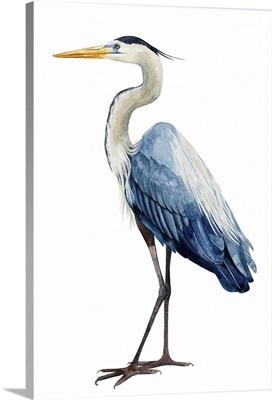 Seabird Heron I