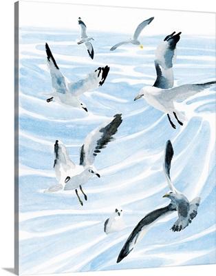 Seagull Soiree II
