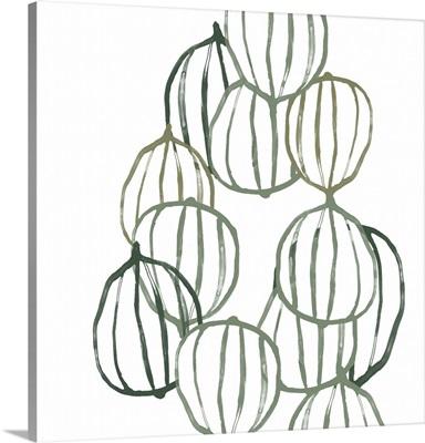 Seed Vessels II
