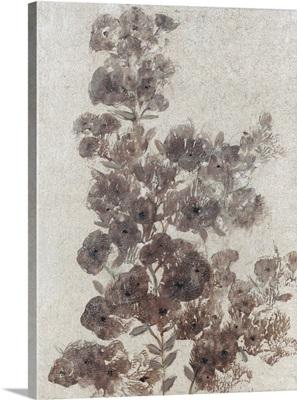 Sepia Flower Study II