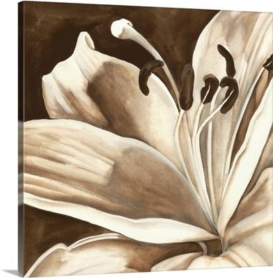 Sepia Lily I