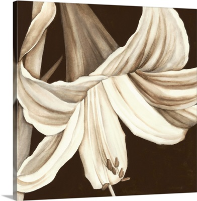 Sepia Lily III