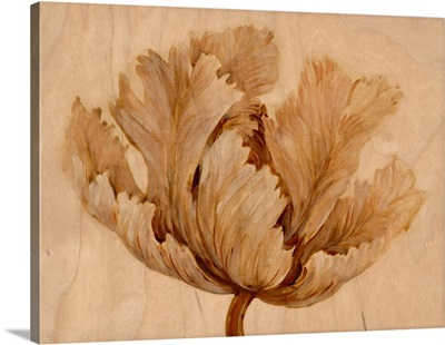 Sepia Tulip on Birch I