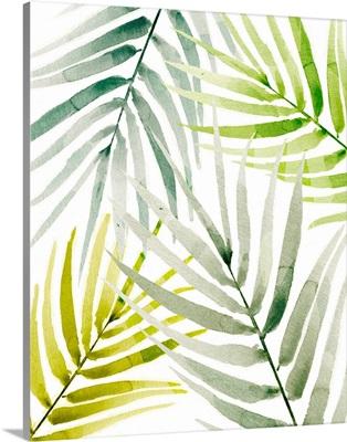 Shady Palm I