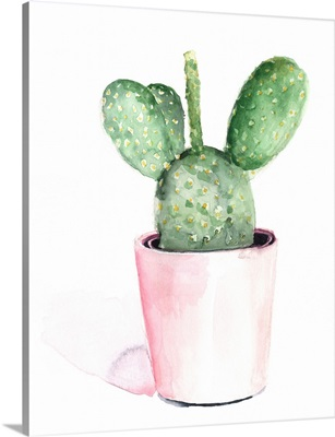 Sharp Succulents III
