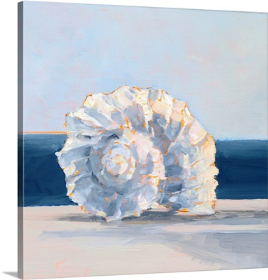 Shell By The Shore IV