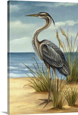 Shore Bird II