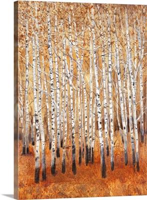 Sienna Birches II