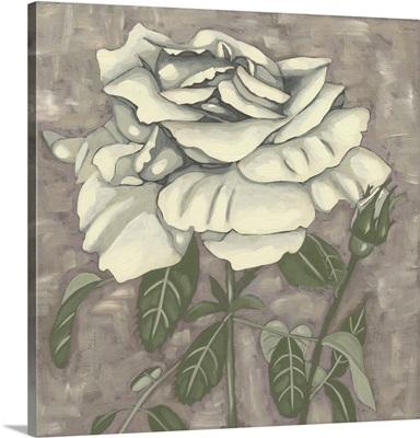 Silver Rose I
