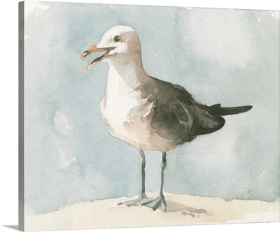 Simple Seagull II