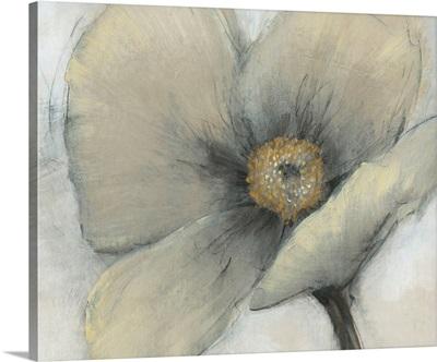 Single Cream Bloom I