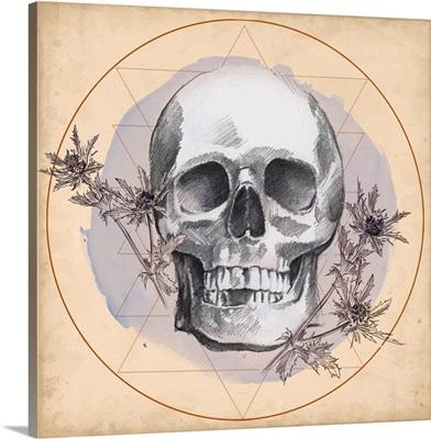 Skull Thistle I