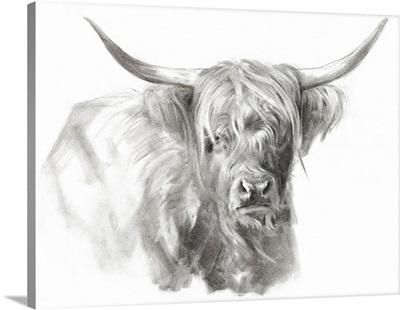 Soft Focus Highland Cattle I