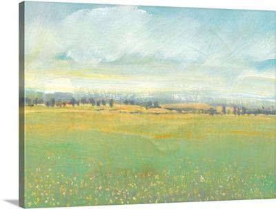 Soft Meadow Light II
