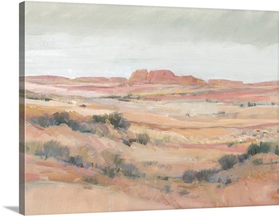 Southwest Landscape II