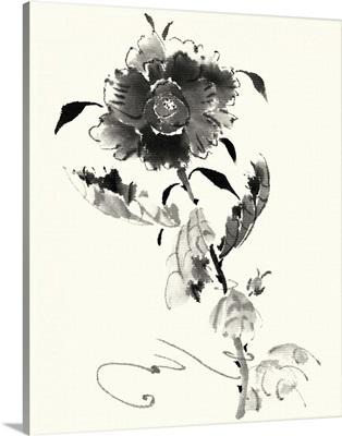 Studies in Ink - Rose I