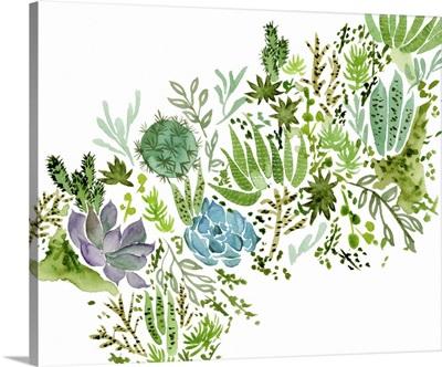 Succulent Field I
