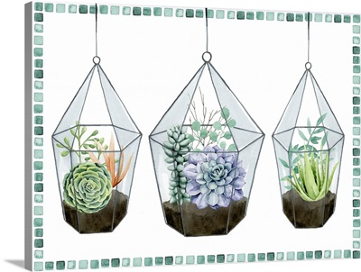 Succulent Swatch Collection A